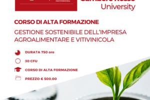 1080×1080 – ALFO-Gestione sostenibile dell'impresa agroalimentare e vitivinicola
